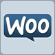 WooThemes icon